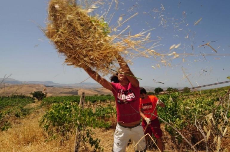 Beni confiscati in Abruzzo: nel mirino rom, camorra e grandi evasori