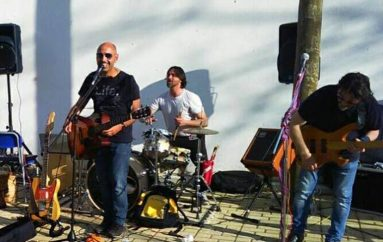 Y.a.w.p. gigs, summer sessions