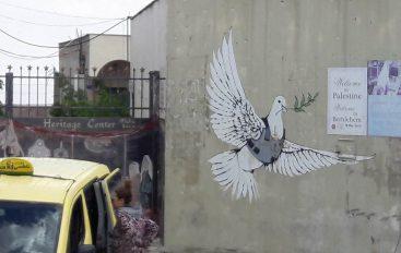 Dall'Aquila alla Palestina clownterapeuta in viaggio