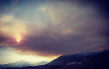 Incendi all'Aquila, notti di paura: fiamme a ridosso delle case
