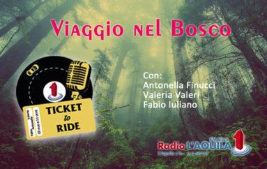 Ticket to Ride, pt. 13: Viaggio nel bosco
