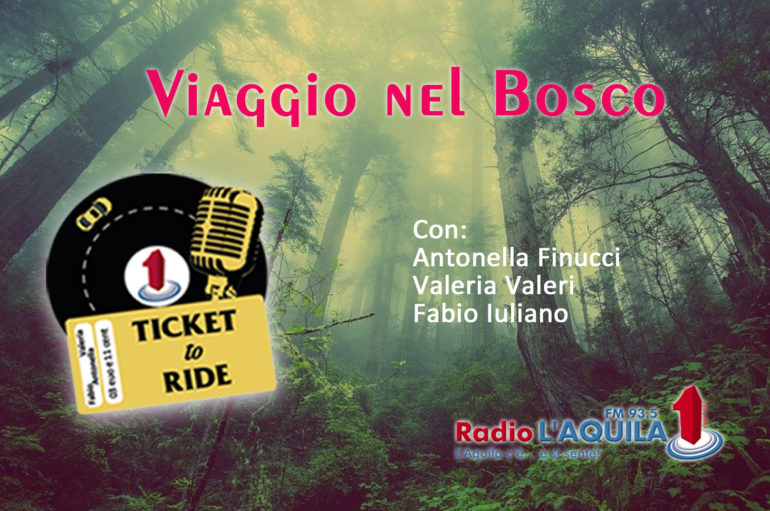 Ticket to Ride, pt. 13: Viaggio nel bosco