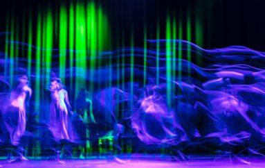 Danza, arte e scienza all'Aquila: arriva Contact(less)